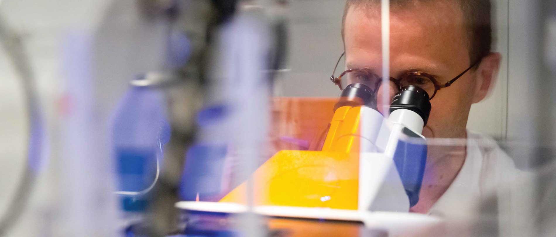Partenariat historique entre l'Institut Weizmann des Sciences et l'Institut Curie