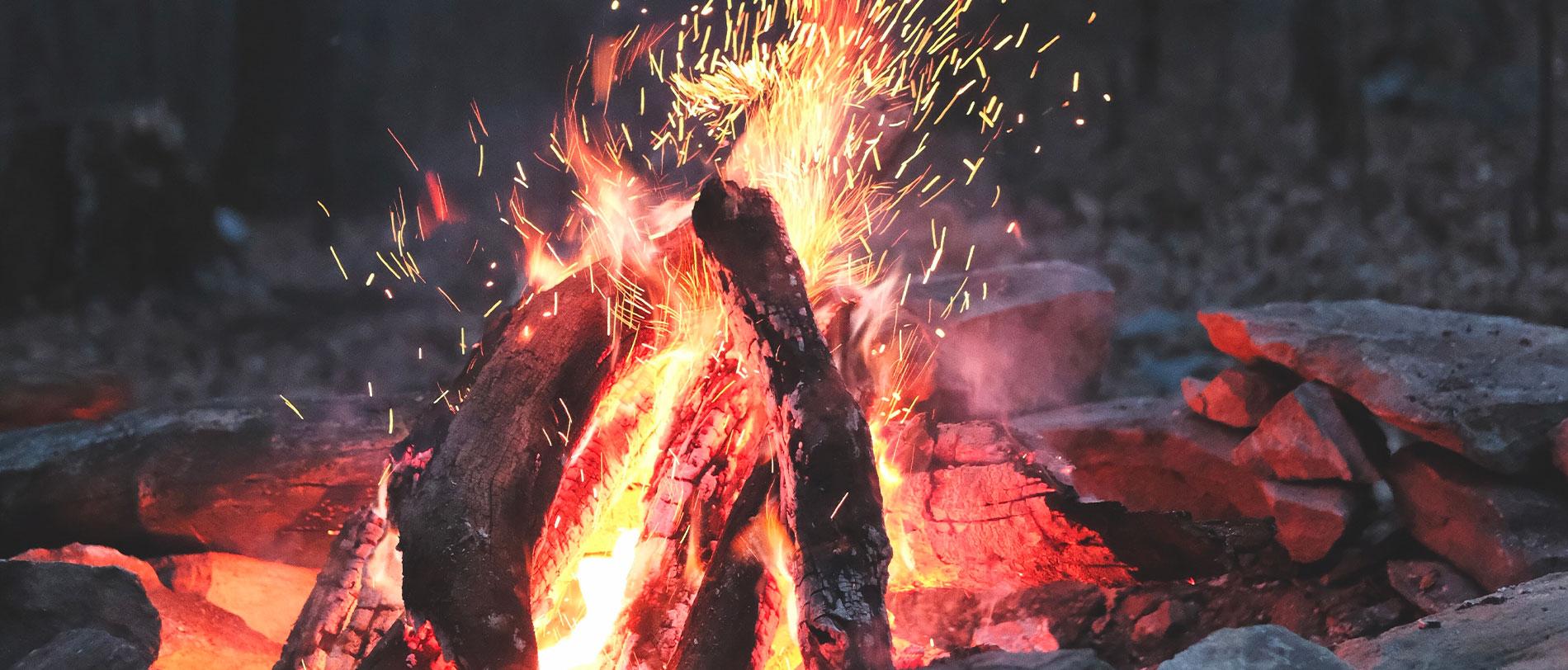 Les homininés utilisaient le feu