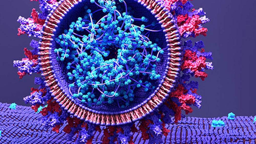 Un super bouchon contre le coronavirus